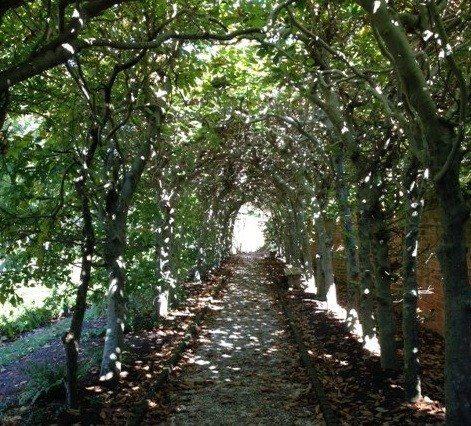 mahdi-doorway